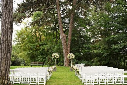 a ceremony setup in front of a Y shaped tree